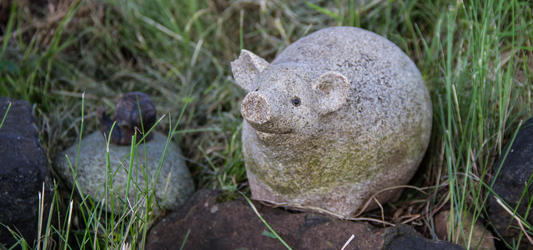 edinbane-croft-self-catering-cottages-piggy