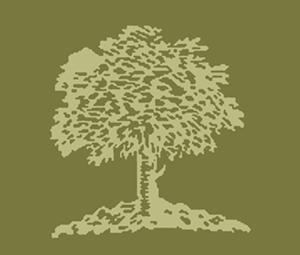 tree_300